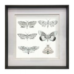 Large Nocturnal Frame by Voyage Maison